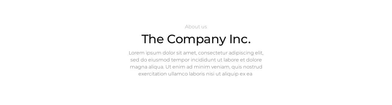 Oxygen Builder Template Basic about 10 Content  About Page, Centered, Company Info, Minimalistic